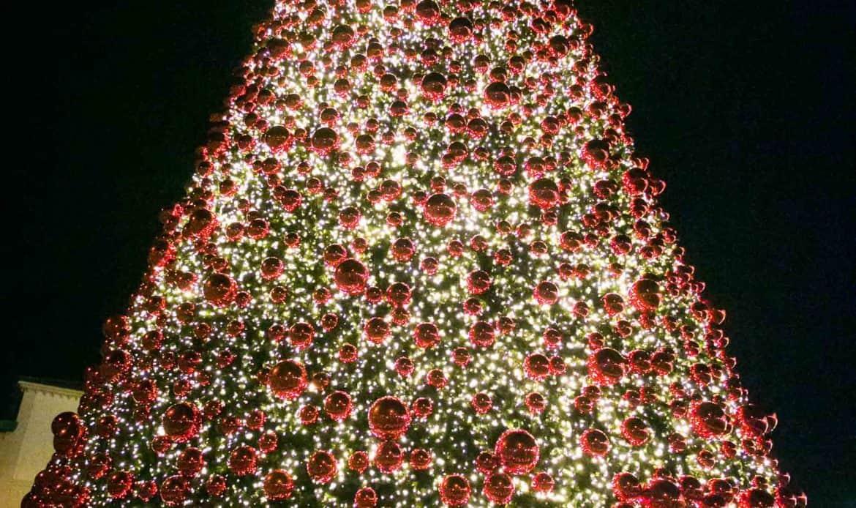 Un magico albero alto oltre 30 metri: il Natale è arrivato all'Outlet di Noventa di Piave