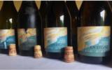 Un vino unico, da provare per le feste