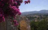 Frappato di Vittoria, il sole di Sicilia e la passione di Arianna