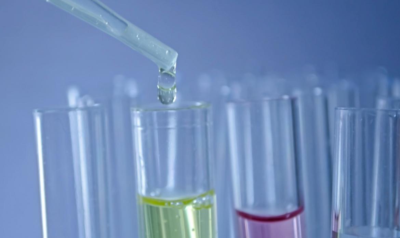 Il Veneto investe in ricerca, nel 2018 finanziati 51 progetti