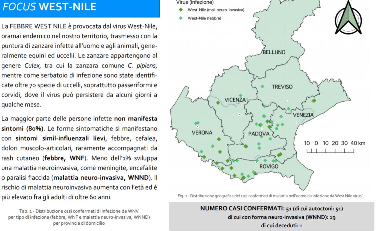 West Nile, 51 casi confermati in Veneto