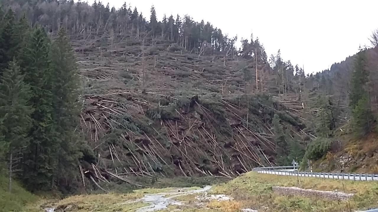 L'ondata di maltempo che ha colpito il Veneto è stata peggio di ...