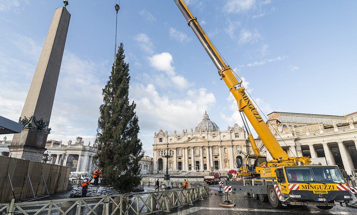 Venerdì 7, alle 16.30, in Piazza San Pietro l'accensione dell'albero di Natale dei boschi del Cansiglio