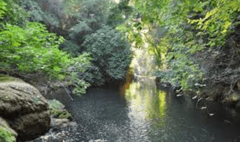 Terrevolute. Focus sull'acqua fattore di rischio e opportunità di sviluppo per i territori