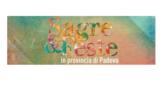 Sagre & Feste: è possibile consultare gli appuntamenti online
