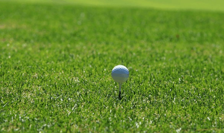 Golf. A Leonardo Novella e Lorenza Perini il campionato veneto. Ca' Amata si aggiudica il titolo a squadre