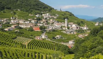 Veneto agricoltura, in arrivo 63 nuovi operai forestali