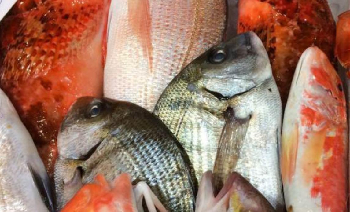 Coldiretti, stop a pesce fresco, scatta fermo pesca: 8 pesci su 10 vengono dall'estero