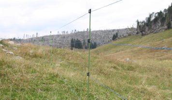 Lupo, installato un recinto elettrificato a Malga Cavallo sull'Altopiano di Asiago