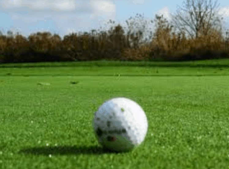 Golf. I grandi campioni all'Open d'Italia. La trevigiana Anna Zanusso vince negli Stati Uniti