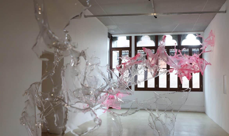 Dopo la Biennale record Natura in posa a Treviso e altre mostre in Veneto