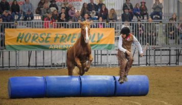 Fieracavalli cresce ancora. In 4 giorni a Verona 168mila visitatori