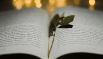Libro da non perdere. La breve storia del futuro