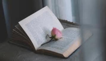 Le letture. Dall'amore ironico e coinvolgente ad un intreccio di vite dal tocco gotico