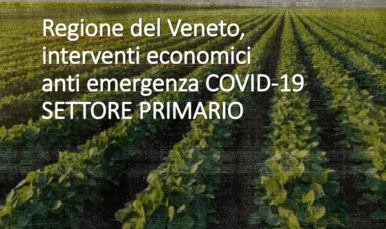 Agricoltura, in Veneto Piano da 165 milioni per superare i danni post pandemia