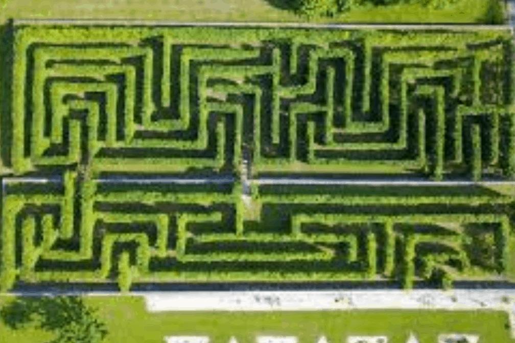 Estate 2020: giardini botanici e aree naturalistiche per itinerari made in Veneto
