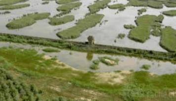"""Vallevecchia-Caorle (VE): Giornata """"aperta"""" per un'agricoltura sempre più sostenibile"""