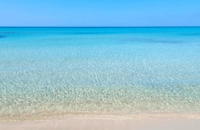 """Turismo. Veneto, FVG ed Emilia Romagna promuovono l'alto Adriatico in Germania. Zaia: """"Il nostro mare è il loro"""""""