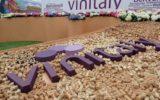 Vino, Osservatorio Vinitaly_Nomisma wine monitor: import con contagocce. Francia ko, Italia giù