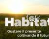 Habitat, appuntamento del sabato: dalle biodiversità andate in fumo ai pomodori